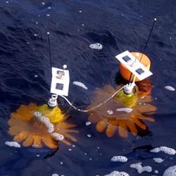 Sensors in coastal waters (NCSU)