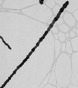 Metal oxide nanowire