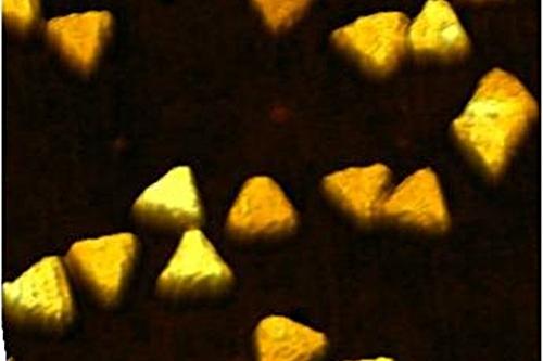 Triangular gold nanoparticles