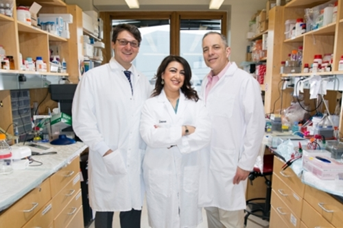 Pancreatic cancer device inventors