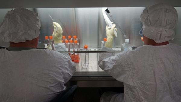 Testing Zika virus