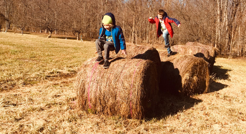 hay bale jumping