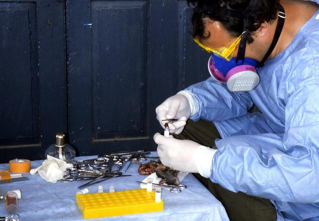 Lassa fever investigation
